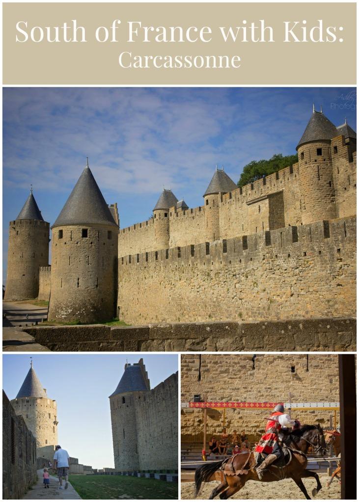 Carcassonne (14)