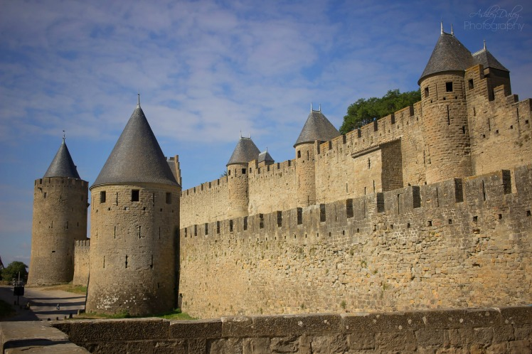 Carcassonne (1)