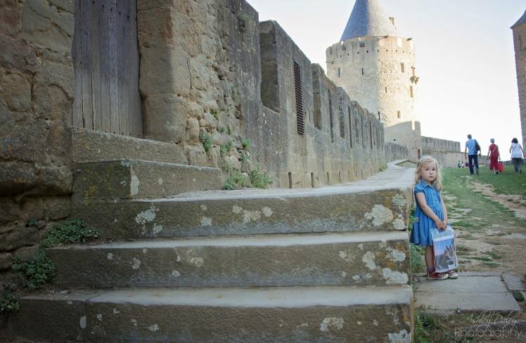 Carcassonne (10)