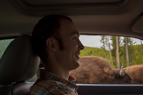 Getting passed by bison