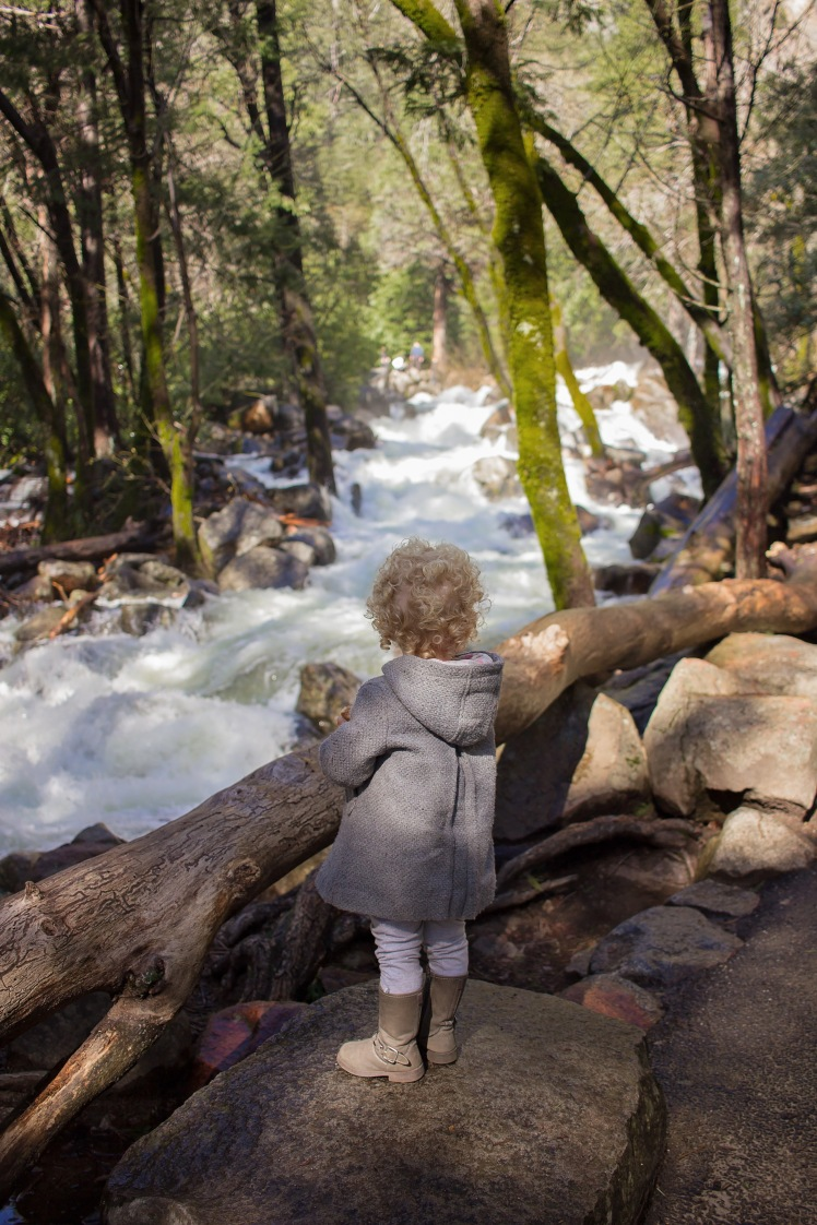 5 Places to Visit In Northern CA with Kids