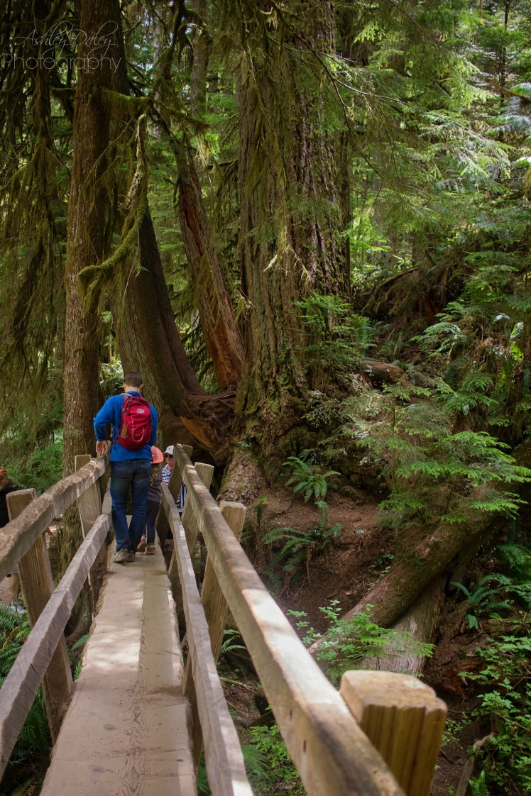 Northern Olympic Peninsula with Kids (10)