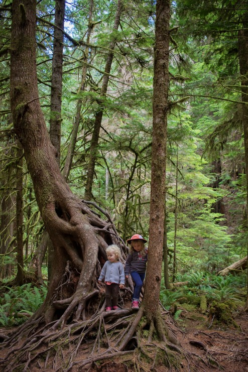 Northern Olympic Peninsula with Kids (14)