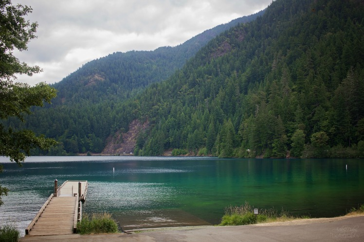 Northern Olympic Peninsula with Kids (2)