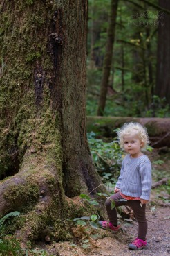 Northern Olympic Peninsula with Kids (5)