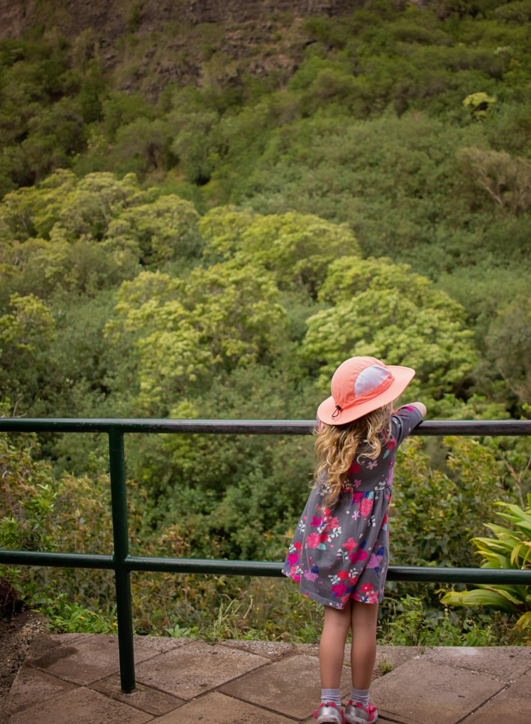 Maui With Kids | Iao Valley