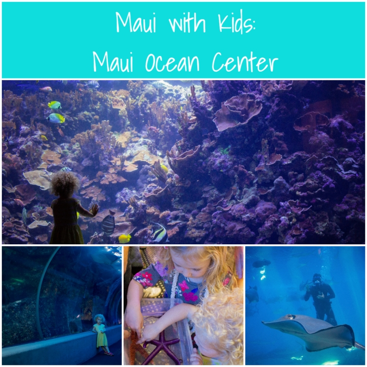 Maui with Kids Maui Ocean Center (2)