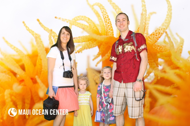 Maui with Kids Maui Ocean Center