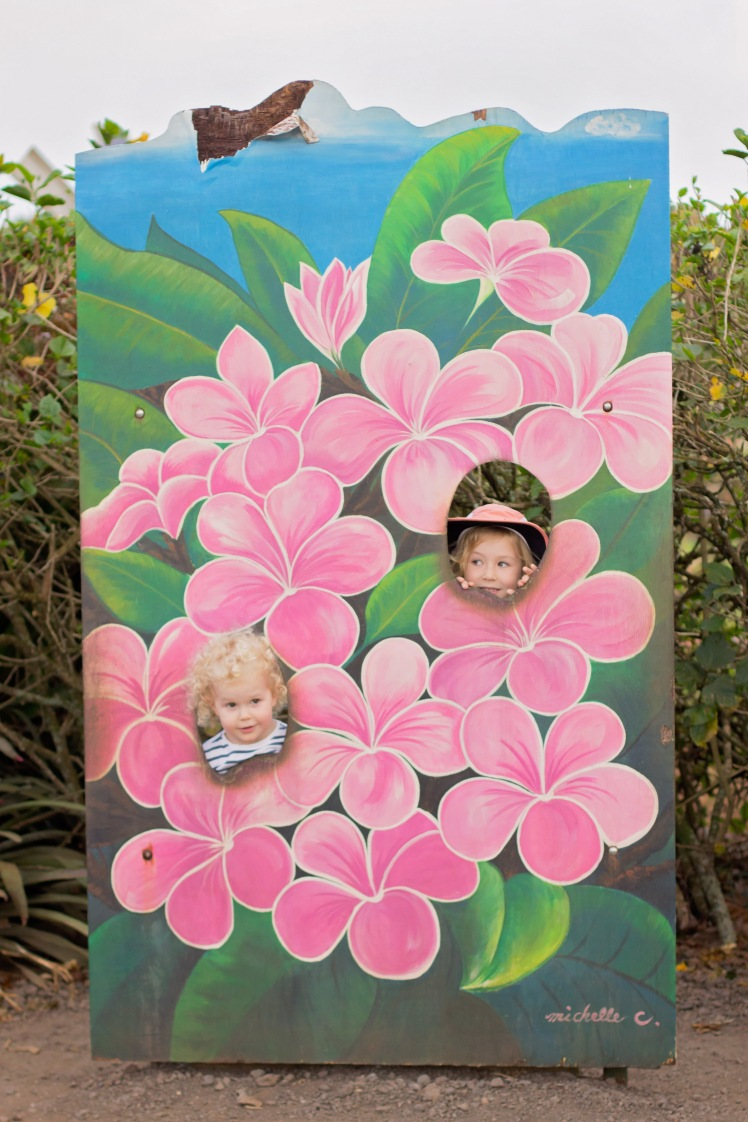 oahu with kids dole plantation
