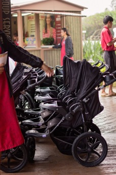 Some awesome strollers available to rent
