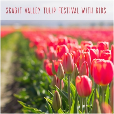 Skagit Valley Tulip Festival with Kids