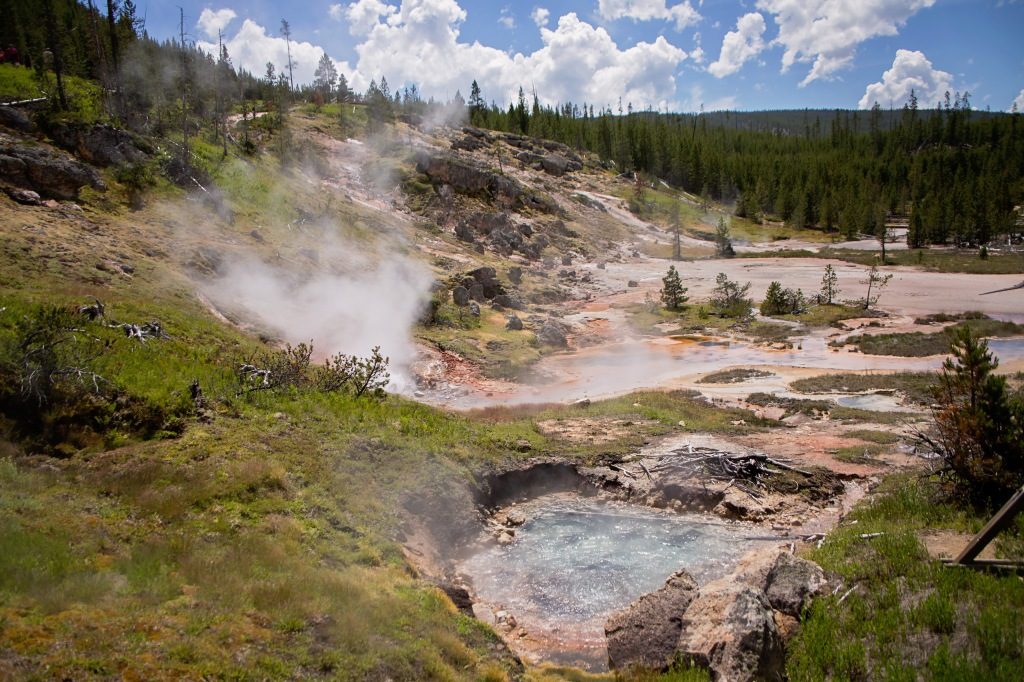 Top 10 Yellowstone with Kids
